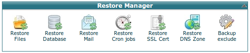 restore_manager